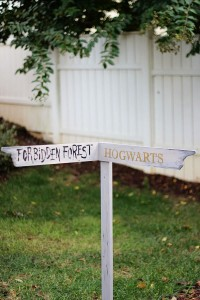 Harry Potter Directional Sign
