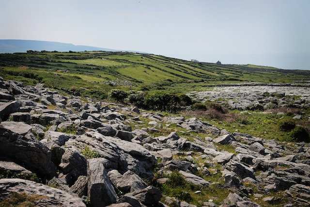 Burren | Two Delighted
