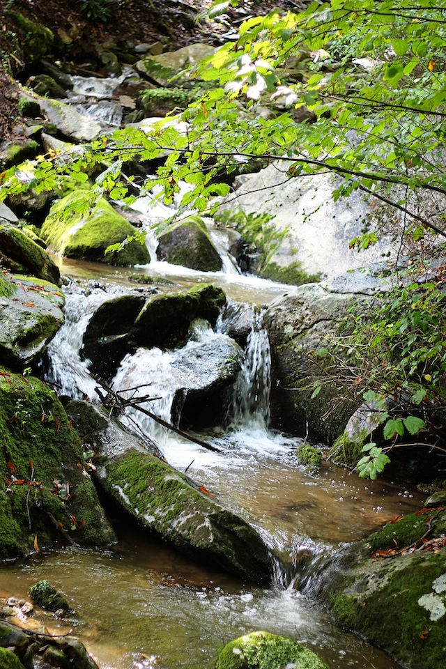 Blowing Rock stream | Two Delighted