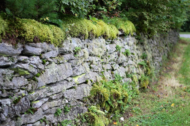 Blowing Rock wall | Two Delighted