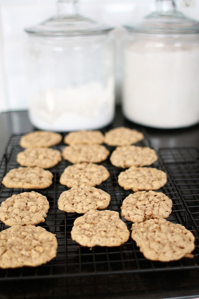 oatmeal pumpkin cookies row Two Delighted
