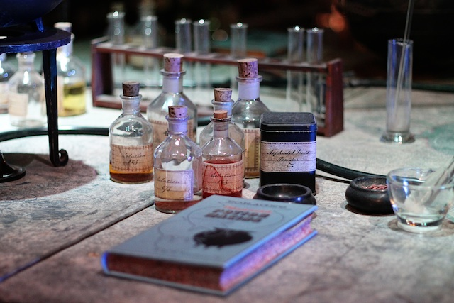 Harry Potter potions class | Two Delighted